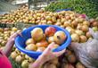 Agadir market