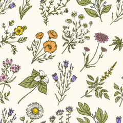 FototapetaWild flowers and herbs. Seamless floral pattern. Vector vintage illustration.