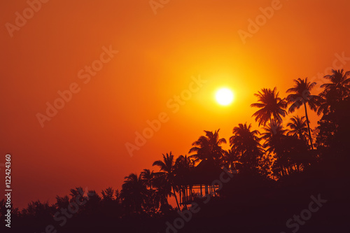 Poster Corail Sunset on tropical beach with palm trees silhouettes