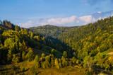 Fototapeta Na ścianę - Carpathian mountains landscape