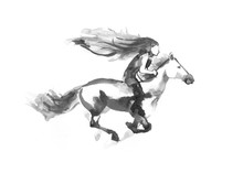 Girl Riding A Running Horse