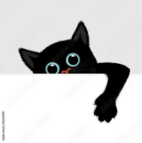 Obraz na plátně playful kitten represents a banner