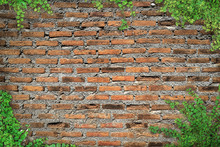Brick Wall With Copy Space Fra...