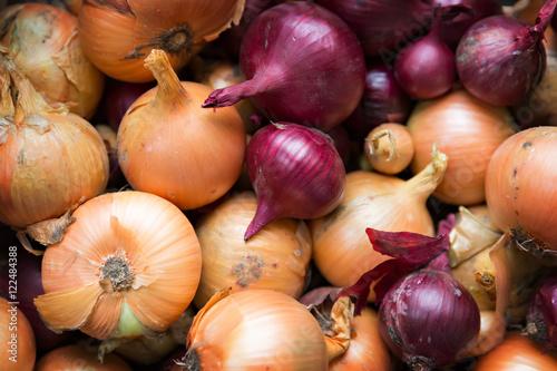 Fotografía  fresh and ripe onions