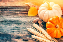 Autumn Still-life With Pumpkins And Wheat In Rustic Setting