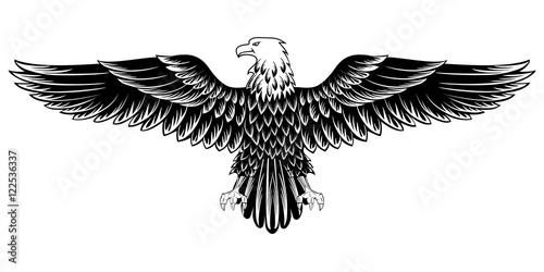 Stampa su Tela eagle