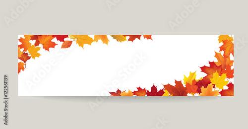 Fotografie, Obraz  Fall leaf nature banner