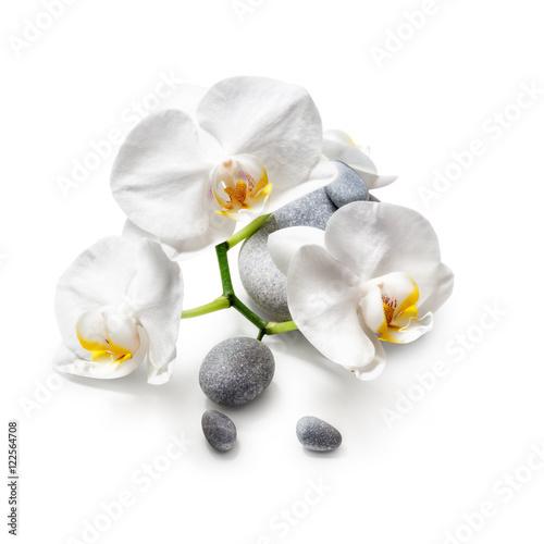 biale-kwiaty-orchidei-i-kamienie-spa