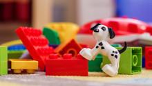 Toy Dog And Blocks