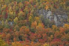 Morin Heights Ski Area In Autumn, Laurentians, Quebec