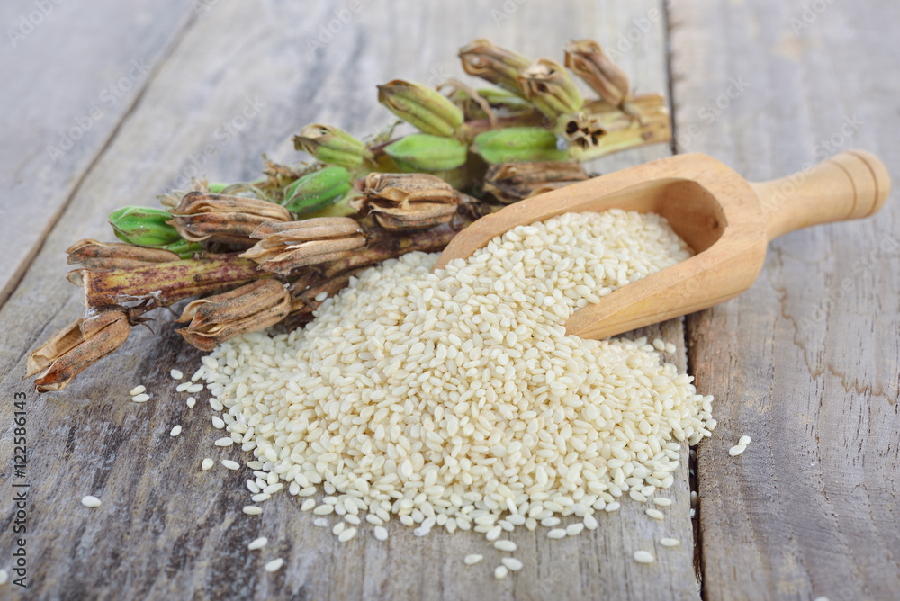 Fototapety, obrazy: white sesame seed and sesame pods with stem on wooden table
