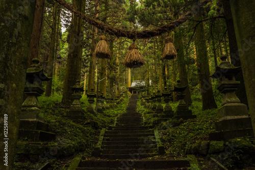 Obraz na płótnie Mysterious Japanese Shrine
