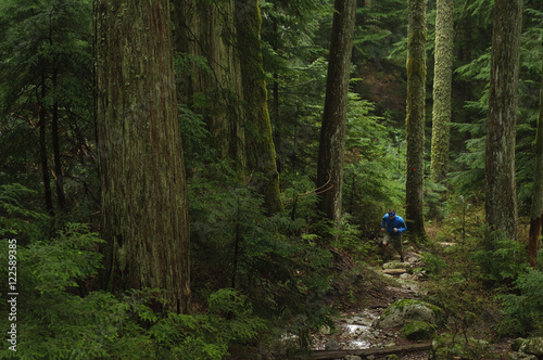 Trail running on the Brothers Creek Loop. Hollyburn Mountain. West Vancouver, British Columbia. Canada