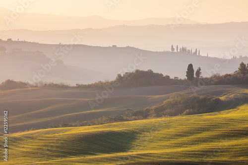 Autumn landscape - Wavy hills and fields at sunrise