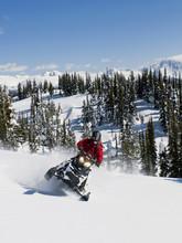A Single Snowmobiler Makes His Way Up A Slope On A Stunning Late Winter Day, Monashee Mountain Range, Near Valemount, Thompson Okanagan Region, British Columbia, Canada