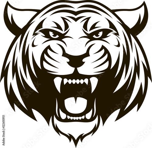 Fényképezés Ferocious tiger head