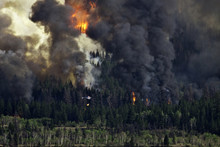 Forest Fire Imagery In The Chilcotin Region Of British Columbia Canada