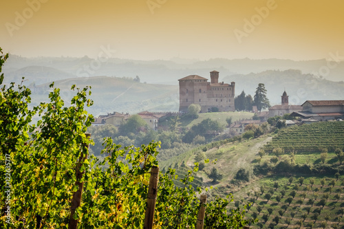 Panoramic view of the Langhe vineyards with Grinzane Cavour Castle