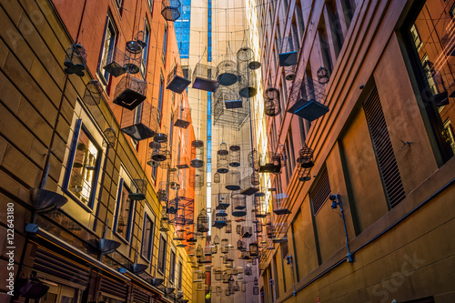 Empty birdcages at Angel Place, Sydney