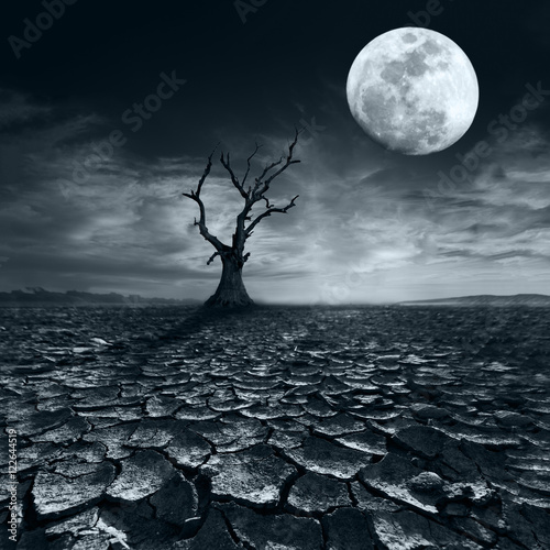Spoed Foto op Canvas Bleke violet Lonely dead tree at full moon night under dramatic cloudy sky at drought cracked desert landscape