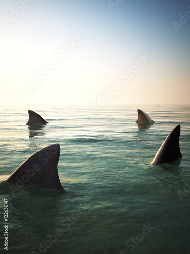 Photo Shark fins circling above the ocean water. 3d rendering