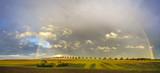 Fototapeta Tęcza - Piękna,kolorowa,naturalna tęcza nad jesiennym polem