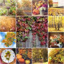 Collage From Autumn Photos.
