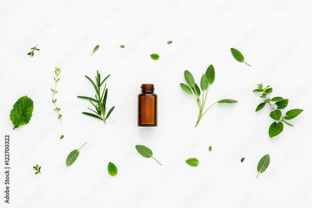 Fototapety, obrazy: Bottle of essential oil with fresh herbal sage, rosemary, lemon