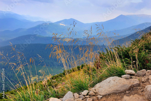 Wonderful mountain landscape. Cloudy day. Autumn grass in the foreground. #122751541