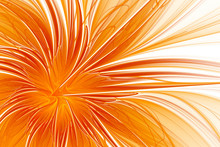 Fractal Abstract Orange Flower On A White Background