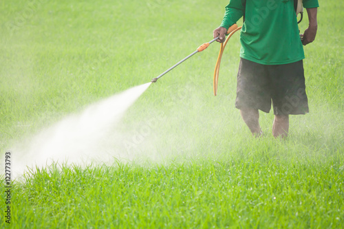 Fotomural farmer spraying pesticide in the rice field