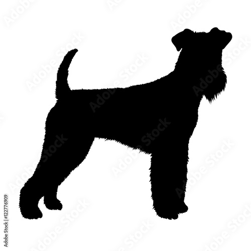 Photo Airedale dog vector illustration style  silhouette black