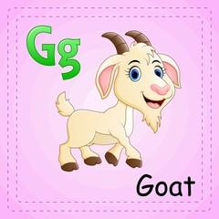 Animals alphabet: G is for Goat