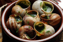 Escargot De Bourgogne Bourguig...