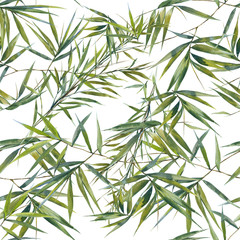 FototapetaWatercolor illustration of bamboo leaves , seamless pattern on white background