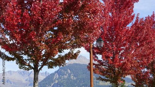 Poster Bordeaux Couleurs d'automne dans les Alpes