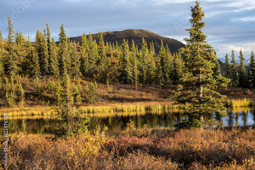 Keuken foto achterwand Natuur Park Alaska kettle pond with water reflections.