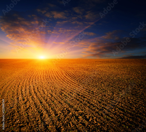 Foto auf AluDibond Landschappen sunset over ploughed fild