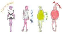 Silhouettes Of Various Types Of Female Figures. Vector Illustration