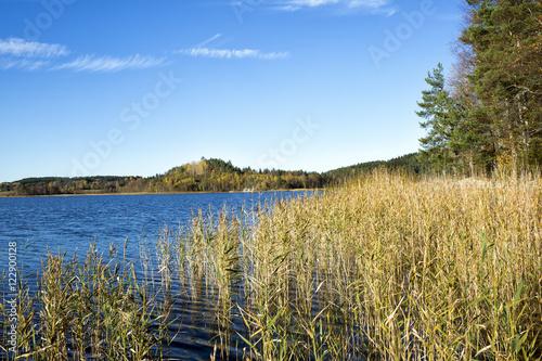 Fotografia, Obraz  Karelia. Ladoga bay.
