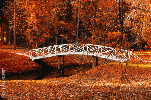Keuken foto achterwand Rood traf. Autumn park landscape - small white wooden bridge in the autumn park among the red autumn trees and dry autumn leaves