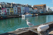 Custom House Quay At Weymouth ...