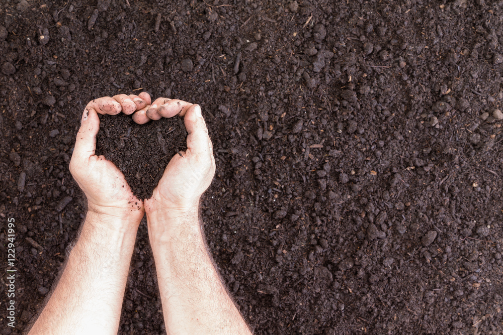Fototapety, obrazy: Pair of hands holding soil in heart shape