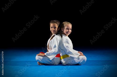 Fotografie, Obraz  Little girls martial arts fighters