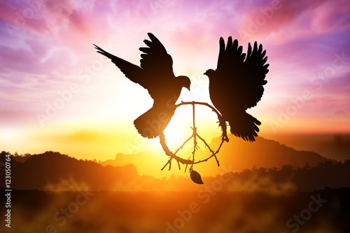 Foto En Lienzo - silhouette of pigeon dove holding branch in peace sign shape