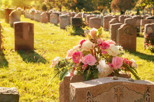 Roses In A Cemetery With Heads...