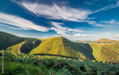 Printed kitchen splashbacks Hill Green Hills and Fern in Warm Sunlight and Blue Sky