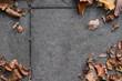 Concrete ground with autmn leaves