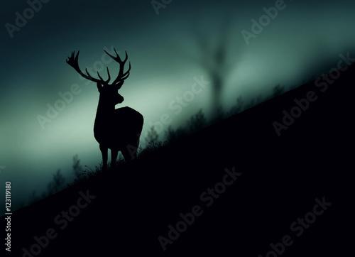 Foto op Aluminium Hert Silhouette di un cervo nel bosco