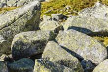 Marmot Between Boulders.